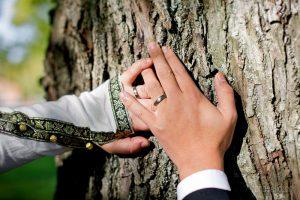 Bröllop A&J - bröllopsfotografering ringar